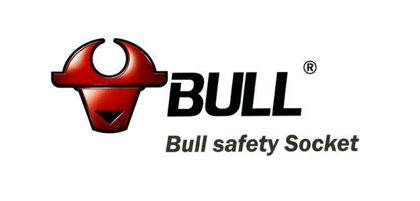 Picture for manufacturer Bull