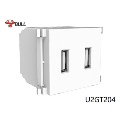 Picture of Bull 2 Gang USB Outlet (White), U2GT204